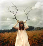 The Stag II by ursrules1
