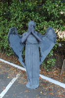 Weeping Angel by OsatoCosplay