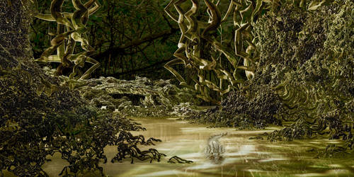 Mangrove Forest by marijeberting
