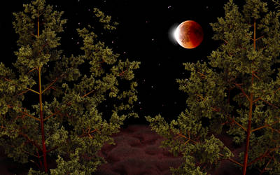 Total Lunar Eclipse 21-1-2019 by marijeberting