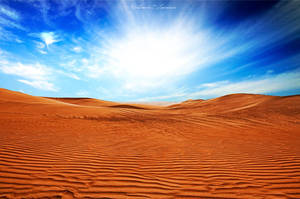 Desert Waves by ashamandour