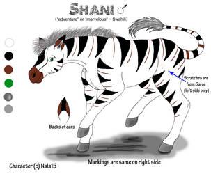 Shani's character sheet NEW by Nala15