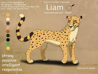 Liam Ref Sheet by Nala15