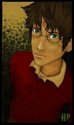 Harry Potter by JACKIEthePIRATE