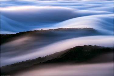 Flow by Aphantopus