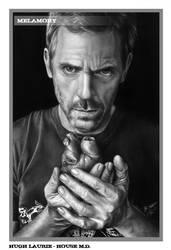 Hugh Laurie - House M.D. by FairyARTos