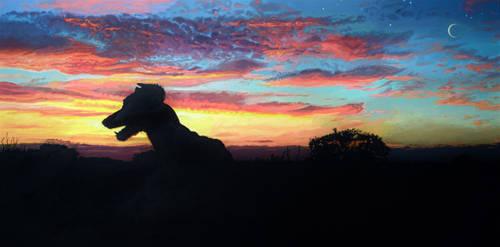A Dreamer's Sky by scumbellina