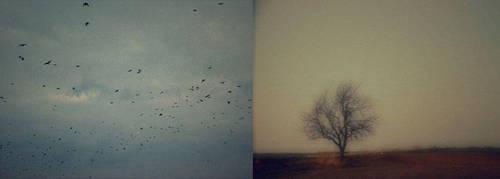 postcards from... by kreskaa