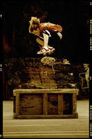 Kickflip over a box by janplexy