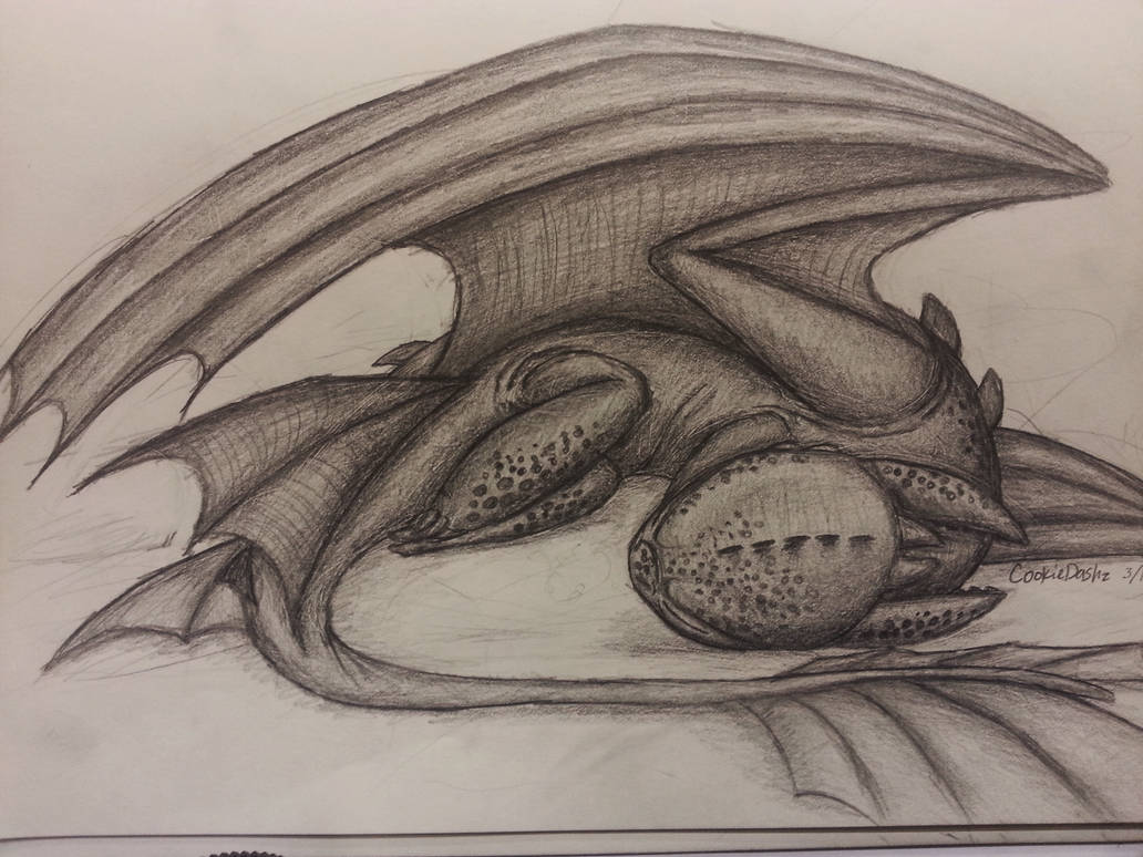 Random Nightfury Drawing Edited By Cookiedashz On Deviantart