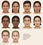 Studies of human ethnic variation by JeffSearle