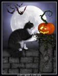 Halloween IX - A Cat's Curiosity by poserfan