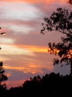 sunset 3 by SammiStock