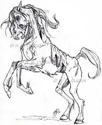 Zombie Horse by HB-Duran