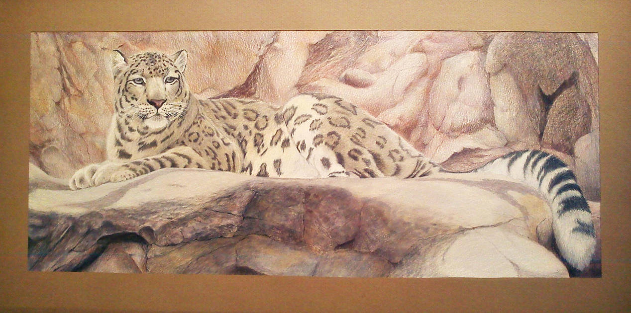 Snow leopard by Leogon