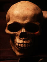 Skull Stock by DanielYuen-Stock