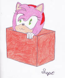 Hedgebox by Sceptilianblade