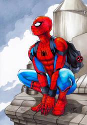 Spiderman by WeijiC