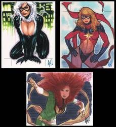 Women of Marvel by AdamHughes