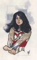 Wonder Woman Auction Art by AdamHughes