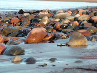 Stoney Beach by positive-image
