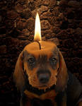 Puppy Candle by TheOtherCraftLord