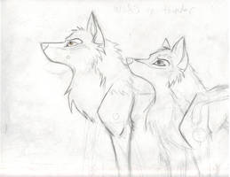 Wolfs on Thunder by zimaro