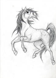 November horse by zimaro