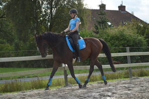 Flat work by Lucy101
