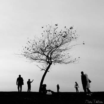 etrafa by MistyTableau