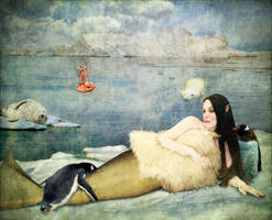 Arctic Mermaid by allison712