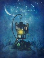 Night Owl by allison712
