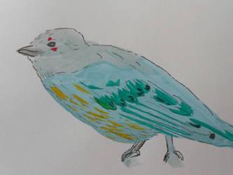 Birdie by katvogel