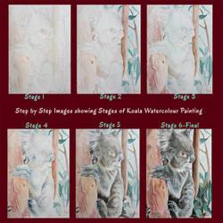 Koala WWM - Step by Step Painting Process by Harmony1965