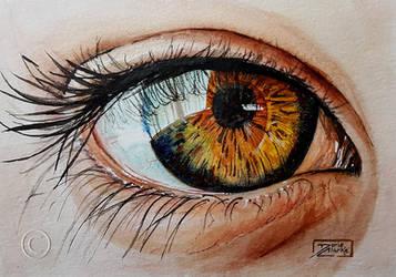 World Watercolor Month - Day 27 (Hazel Eye) by Harmony1965