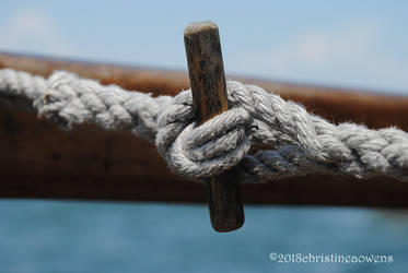 twisted rope knot by ChristinePhotoArt