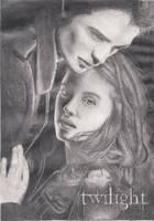 Twilight Movie Poster by craftymama2