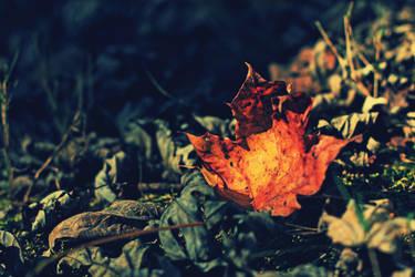 Faint Rustle by Sunira