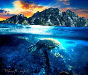Turtle Time by Bluefiregrl