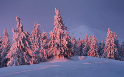 Carpathian winter evening by Sergey-Ryzhkov