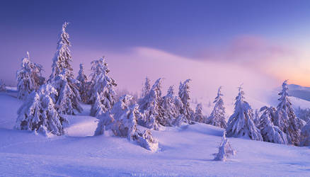 Winter in Carpathians by Sergey-Ryzhkov