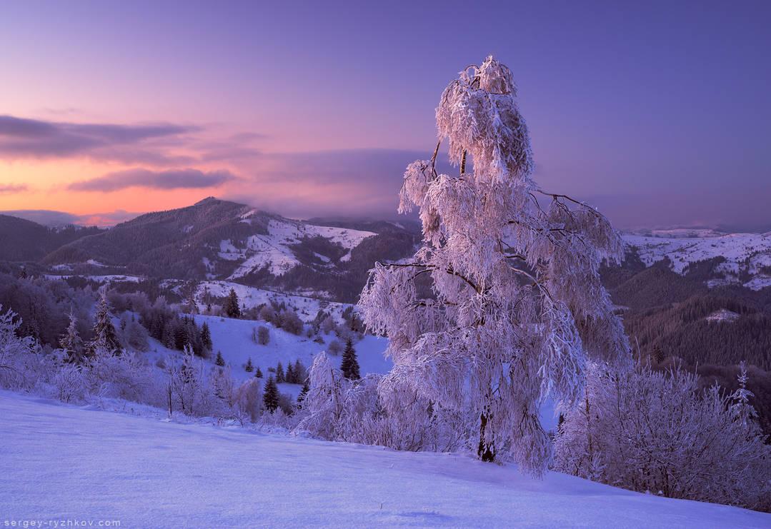 Winter in Bukovina by Sergey-Ryzhkov