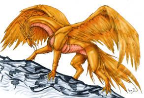 Mycen - the Golden Dragoness by Aarok