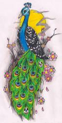 Peacock by Kirzten