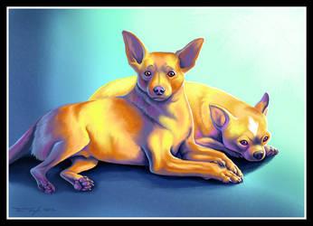 Monkey and Bambi - Chihuahuas by jaxxblackfox