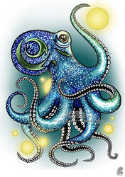 'Pimpy'. Curious tiny octopus. by Stanislava-Korn