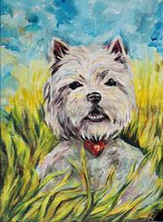 Summer dog by Leona-Norten