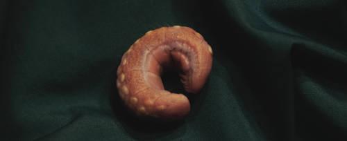 Soterios Larva by derektye05