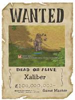 WANTED: Xaliber von Reginhild by XaliberDeathlock