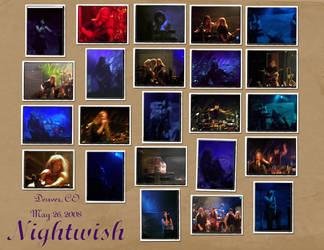 Nightwish Denver Collage 1 by DruidElf